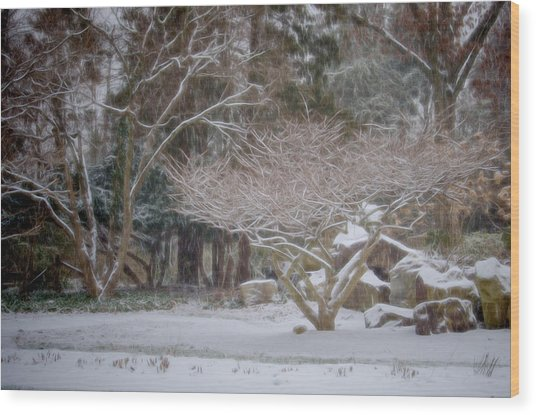 Garden Scene During Winter Snow At Sayen Gardens 2 Wood Print
