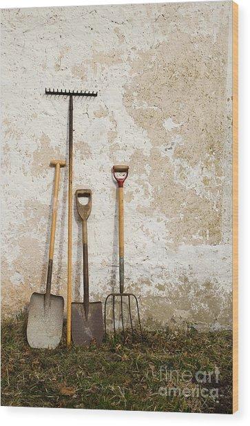 Garden Tools Wood Print
