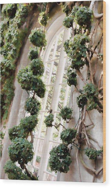 Garden Window Wood Print by Elin Mastrangelo