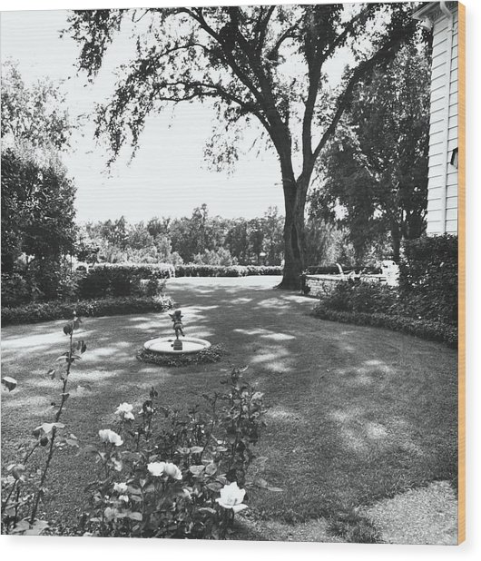 Garden With Fountain Wood Print