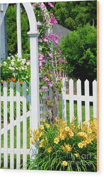 Garden With Picket Fence Wood Print