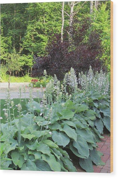 Gardens 111 Wood Print by Patsy Pratt