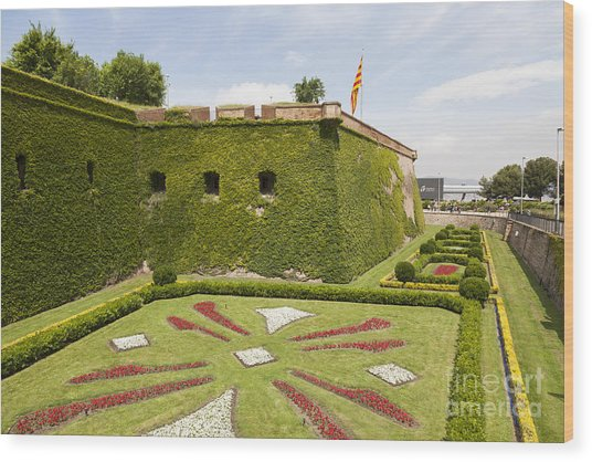 gardens around Montjuic Castle in Barcelona Wood Print