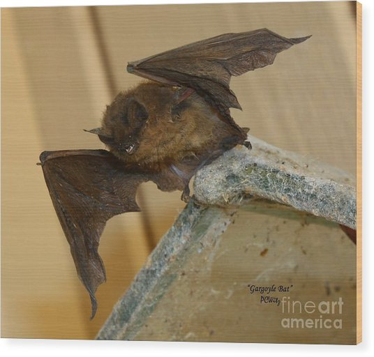 Gargoyle Bat Wood Print