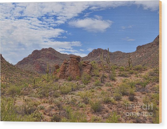 Gates Pass Scenic View Wood Print