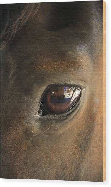 Gateway To A Horses Soul Wood Print