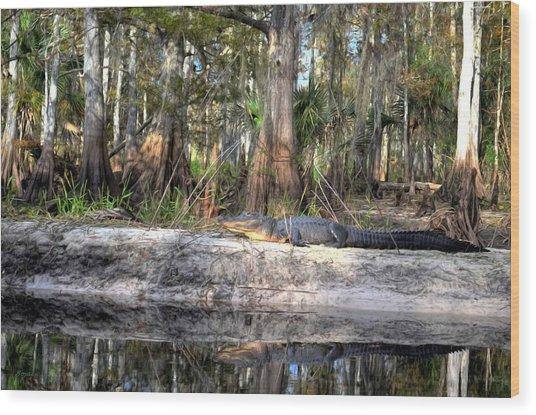 Gator Country Wood Print by Bob Jackson