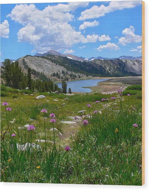 Gaylor Lakes And Wild Onions By Frank Lee Hawkins Wood Print