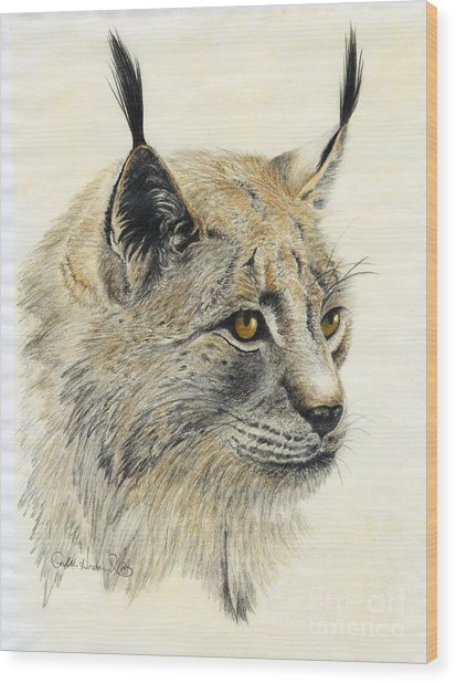 Gazing Lynx Wood Print