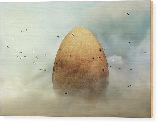 Genesis Wood Print by Piet Flour