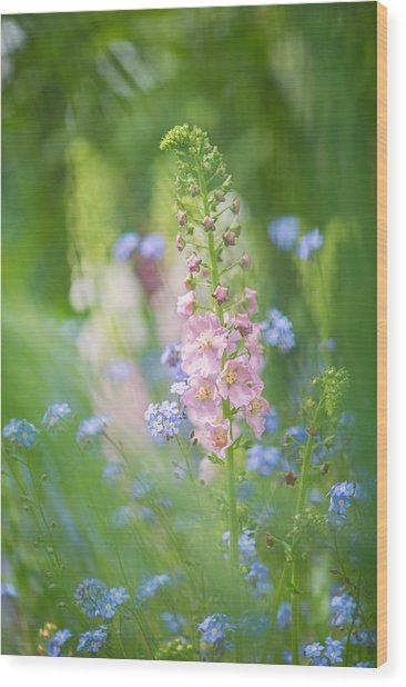 Gentle Enchantment Wood Print