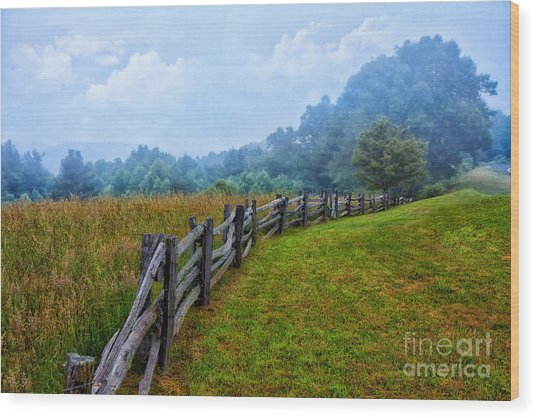 Gentle Morning - Blue Ridge Parkway I Wood Print