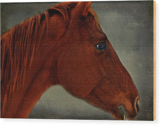 Gentle Red Wood Print