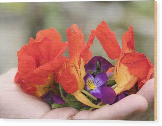 Gently Held Flowers Wood Print by Carolyn Reinhart
