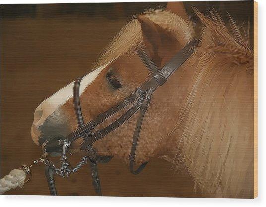 Genuine Pony Wood Print