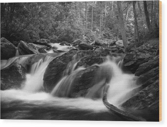 Georgia Mountain Water In Black And White Wood Print