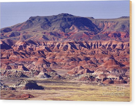 Georgia O'keefe Country - The Painted Desert Wood Print by Douglas Taylor