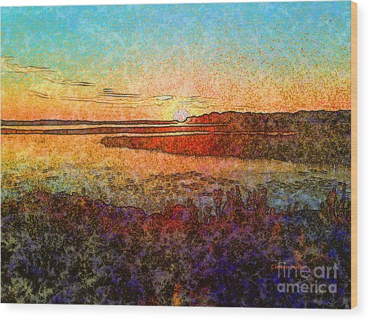 Georgian Bay Sunset Wood Print