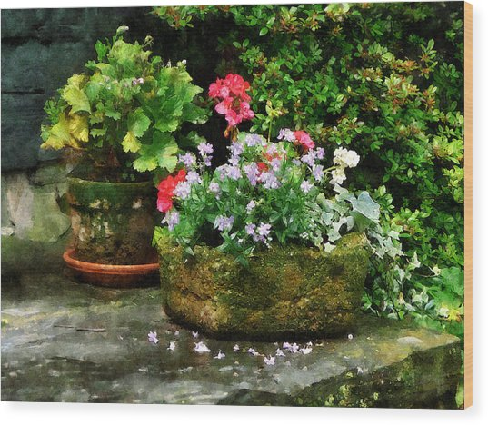 Geraniums And Lavender Flowers On Stone Steps Wood Print by Susan Savad