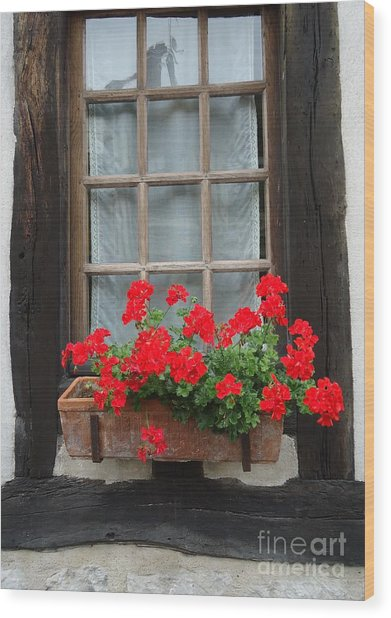 Geraniums In Timber Window Wood Print