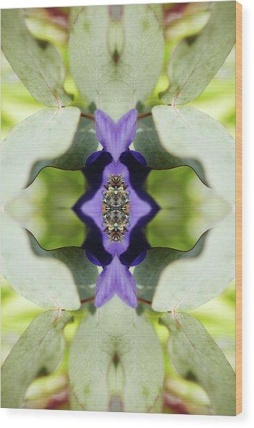 Gerbera Flower Wood Print by Silvia Otte