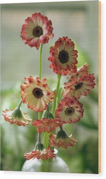 Gerbera Jamesonii In Vase Wood Print