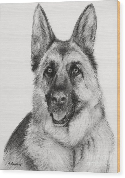 German Shepherd Drawn In Charcoal Wood Print