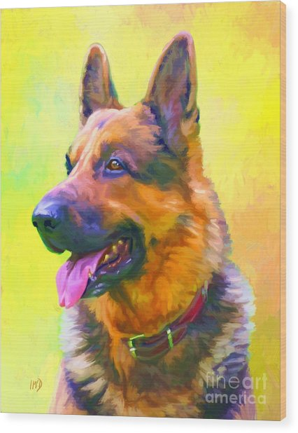 German Shepherd Portrait Wood Print by Iain McDonald