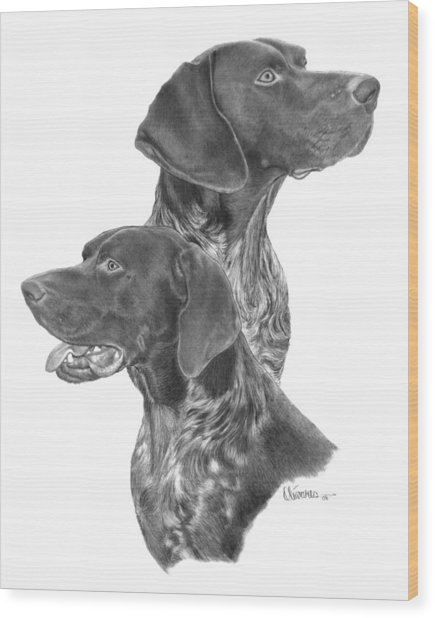 German Short-hair Pointer Wood Print
