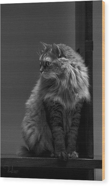 Ghiga Posing In Black And White Wood Print