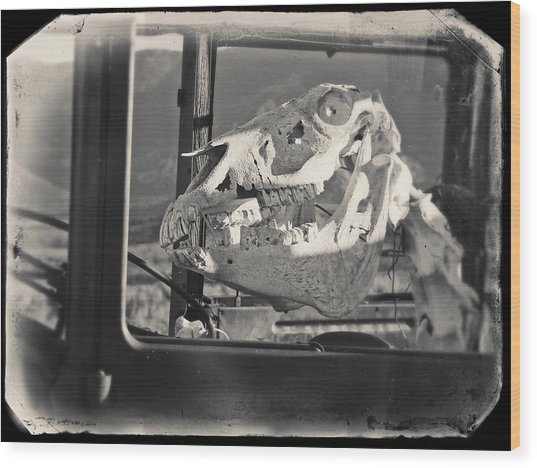 Wood Print featuring the photograph Ghost Car Of Equine Death by David Bailey