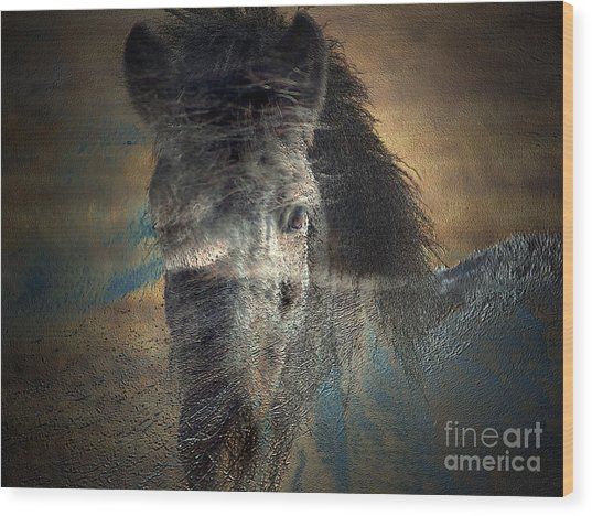 Ghost Pony Wood Print