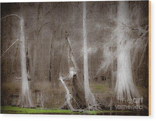 Ghost Trees Wood Print