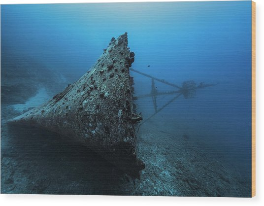 Ghost Wreck Wood Print by Barathieu Gabriel