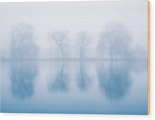 Ghostly Reflections Wood Print