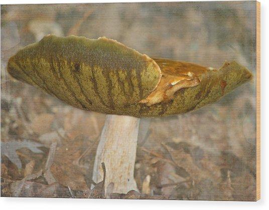 Giant Mushroom Wood Print