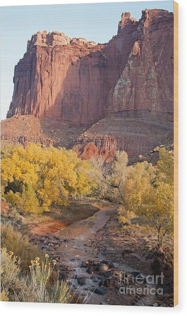Gifford Farm Capitol Reef National Park Wood Print