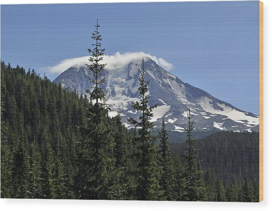 Gifford Pinchot National Forest And Mt. Adams Wood Print