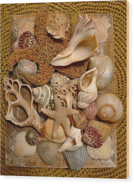 Gifts From The Sea Wood Print