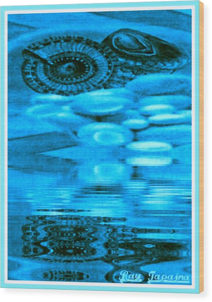 Gifts From The Sea Wood Print by Ray Tapajna