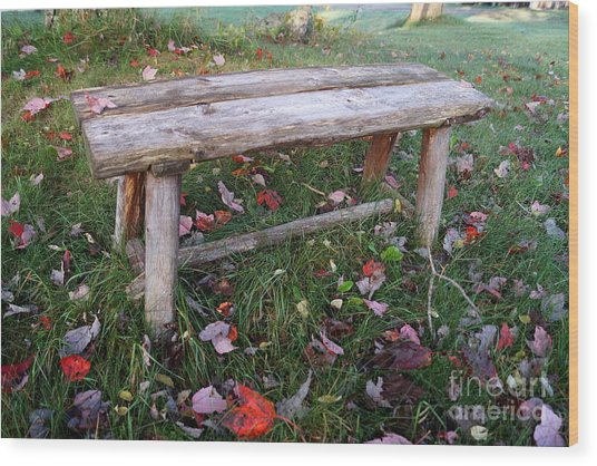 Ginny's Bench Wood Print
