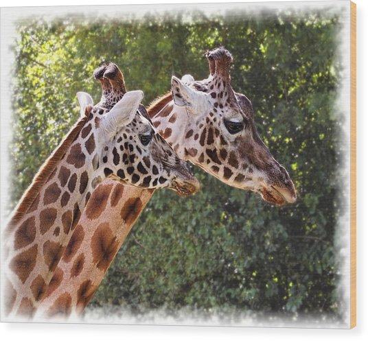Giraffe 03 Wood Print
