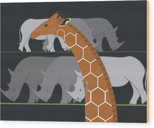 Giraffe And Rhinos Wood Print