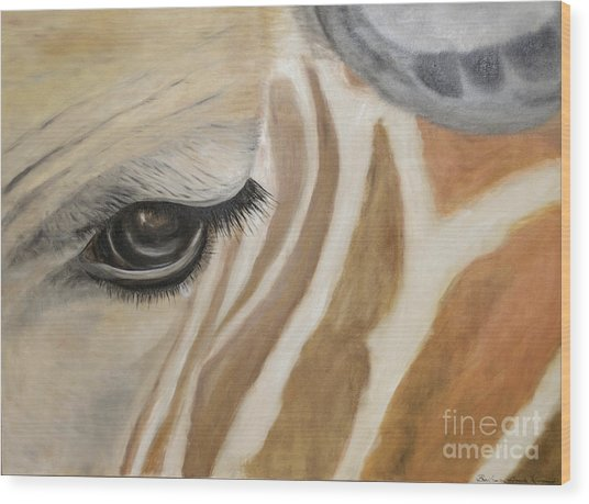 Giraffe In Captivity Wood Print