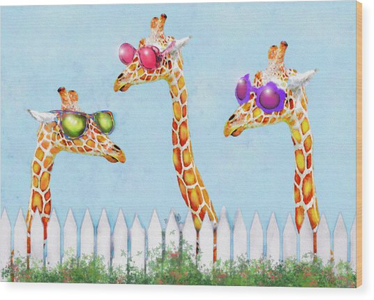 Giraffes In Sunglasses Wood Print