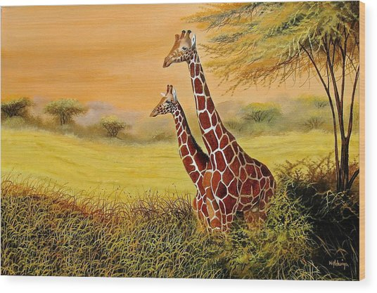 Giraffes Watching Wood Print