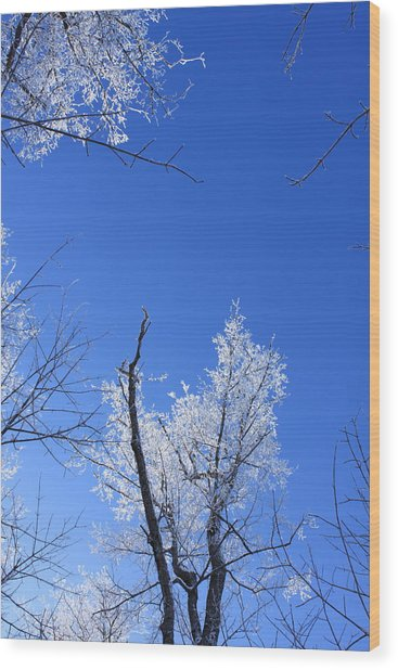 Givre Wood Print by Maude Demers