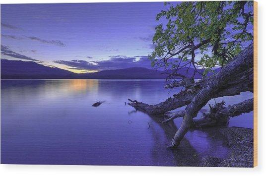 Glacier Blue Wood Print
