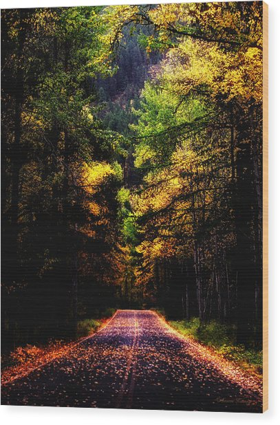 Glacier Fall Road Wood Print