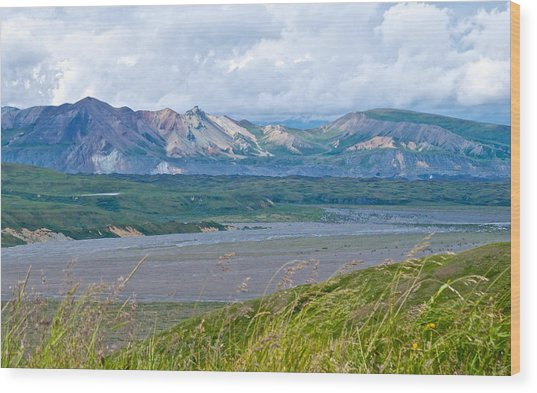 Glaciers And Mountains From Eielson Visitor's Center In Denali Np-ak  Wood Print